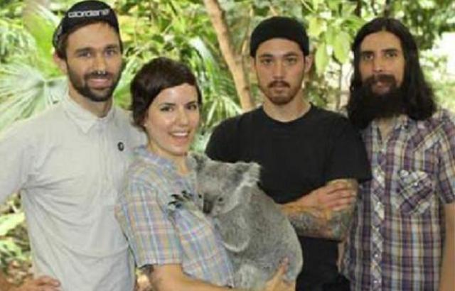 punch koala